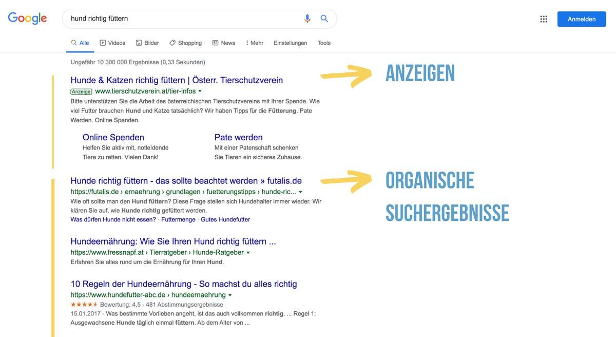 Organische Suchergebnisse Beispiel